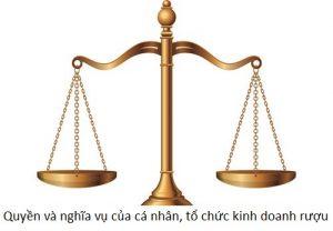 Quyền và nghĩa vụ của cá nhân, tổ chức kinh doanh rượu