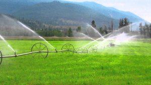 Đối tượng được miễn thuế sử dụng đất nông nghiệp